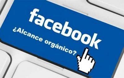 Los negocios tradicionales prefieren no utilizar Facebook Ads