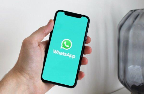 campaña whatsapp